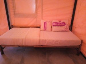 Kundalika Camps at Kolad with Extra Beds